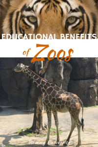 Educational Benefits of Zoos