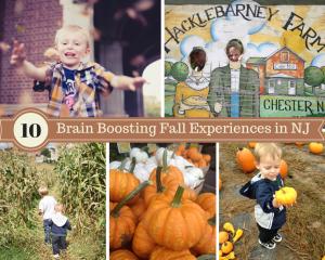 Fall Experiences
