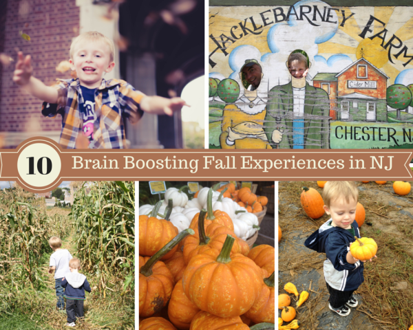 Day Trips From Nj For Kids In Fall