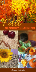 Fall Sensory Learning