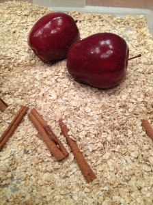 Apples and Cinnamon Bin