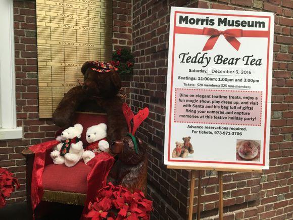 teddy-bear-tea-morris-museum