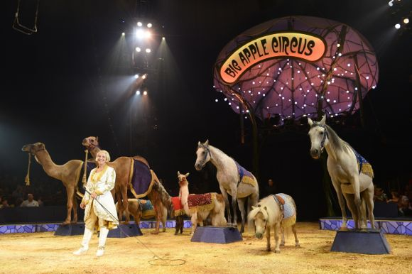 Here is Jenny Vidbel with some of the amazing animals you will see at the show! PHOTO CREDIT: Bertrand Guay/Big Apple Circus