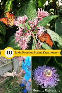 Brain Boosting Spring Experiences