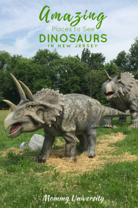 Amazing Dinosaurs Places to See Dinosaurs in New Jersey