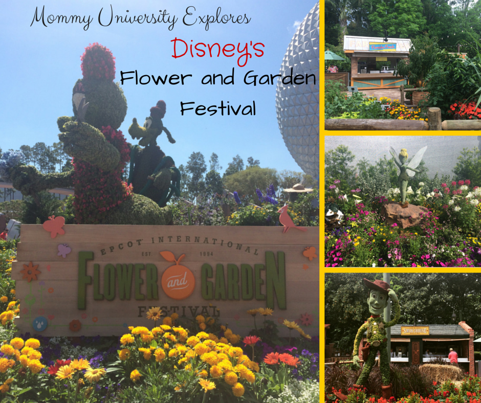 Mommy University Explores Disney 39 S Flower And Garden Festival Mommy University