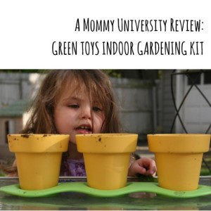 Indoor Gardening Kit