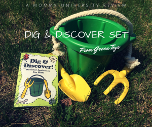 Dig and Discover Set