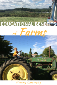 Educational Benefits of Farms