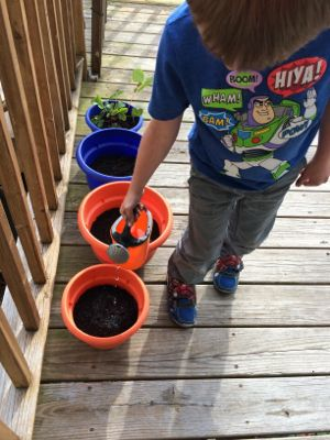 Gardening teaches kids to be responsible for their plants by caring for them every day!