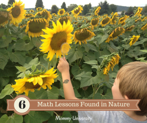 Math Lessons in Nature