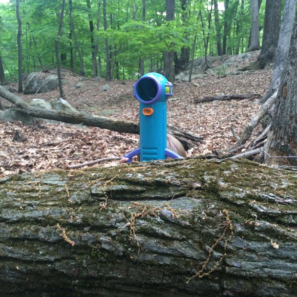 The Sneak and Peek Periscope is perfect for watching nature undetected!
