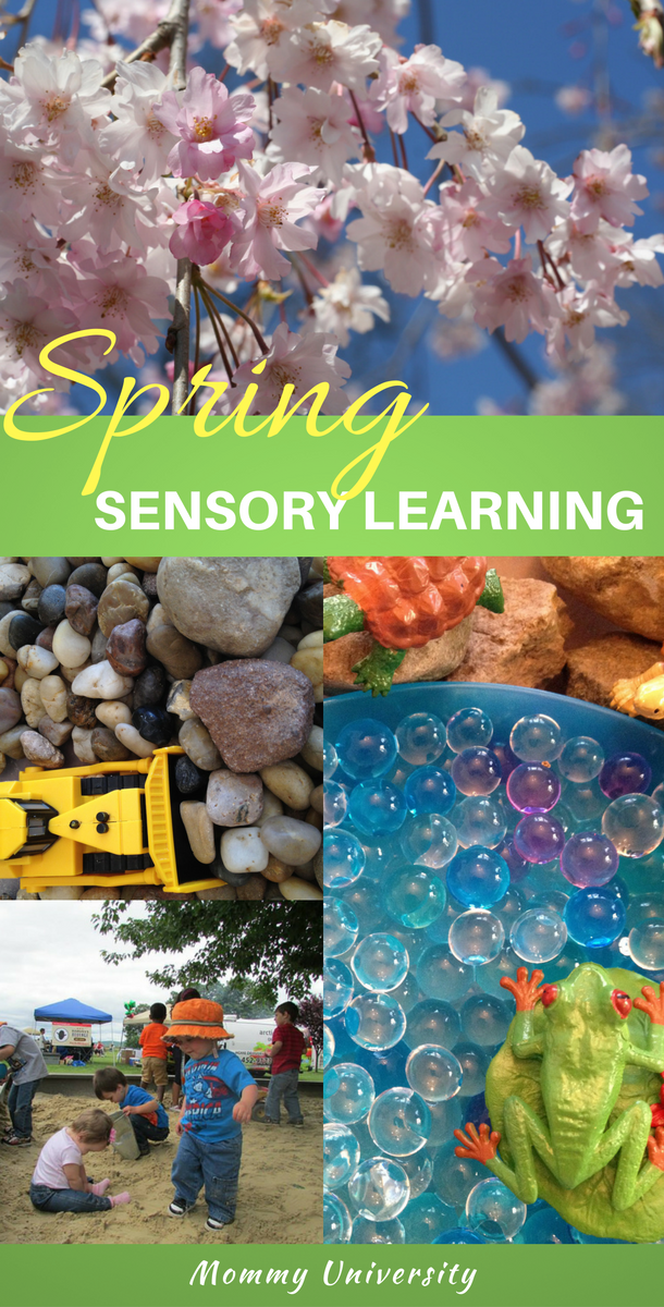 spring sensory learning