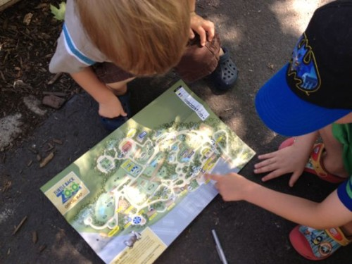 My boys had so much fun looking for animals from specific parts of the world!