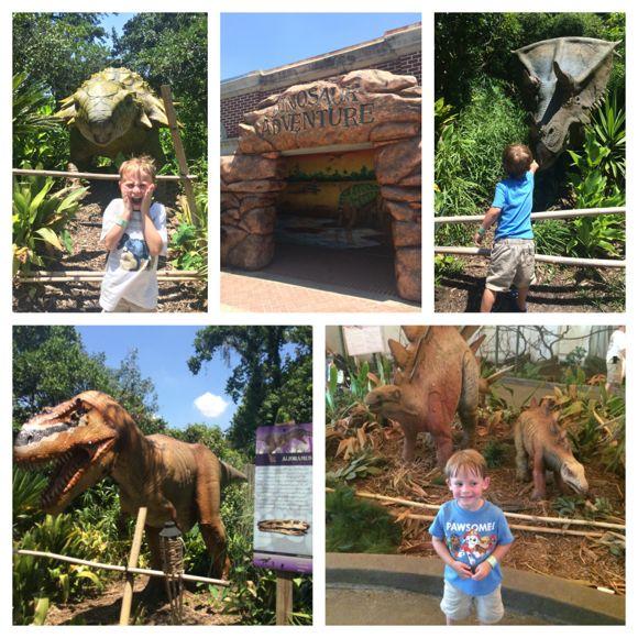 Audubon Dinosaur Adventure