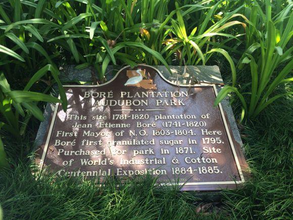 Audubon History