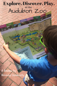 Audubon Zoo Review