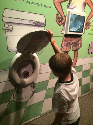 What kids doesn't want to look inside a toilet?