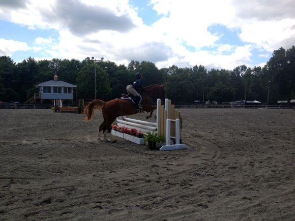 NJ State Fair Horse Show