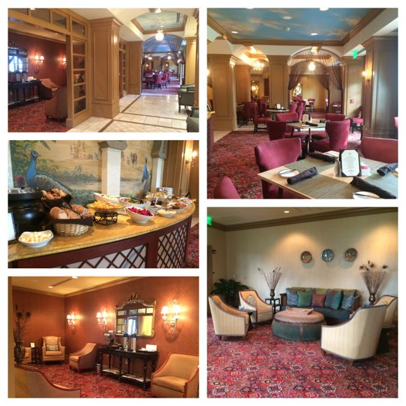 Spa Oasis Lounge