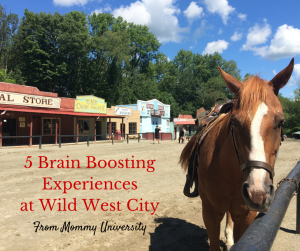 5 Brain Boosting Experiences at Wild West City