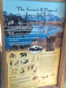 Animals and Plants of Lewis and Clark