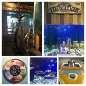 Geaux Fish Louisiana Collage