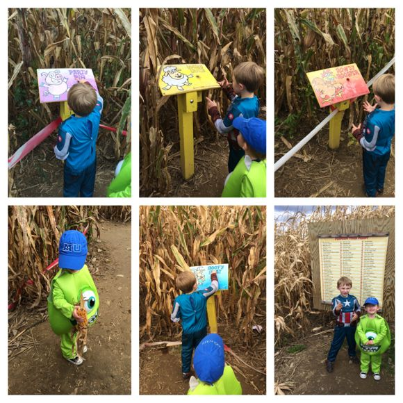 Heaven Hill Farm Corn Maze