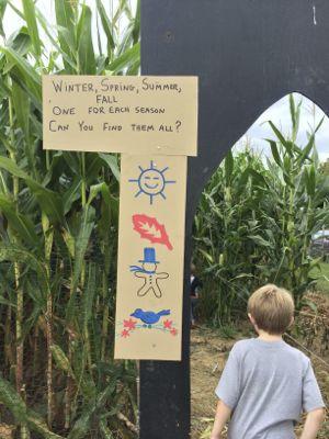Terhune Orchard Corn Stalk Maze
