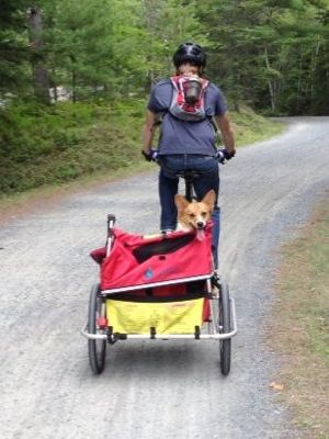 While biking and hiking with our dogs, we always carry enough water for all of us!