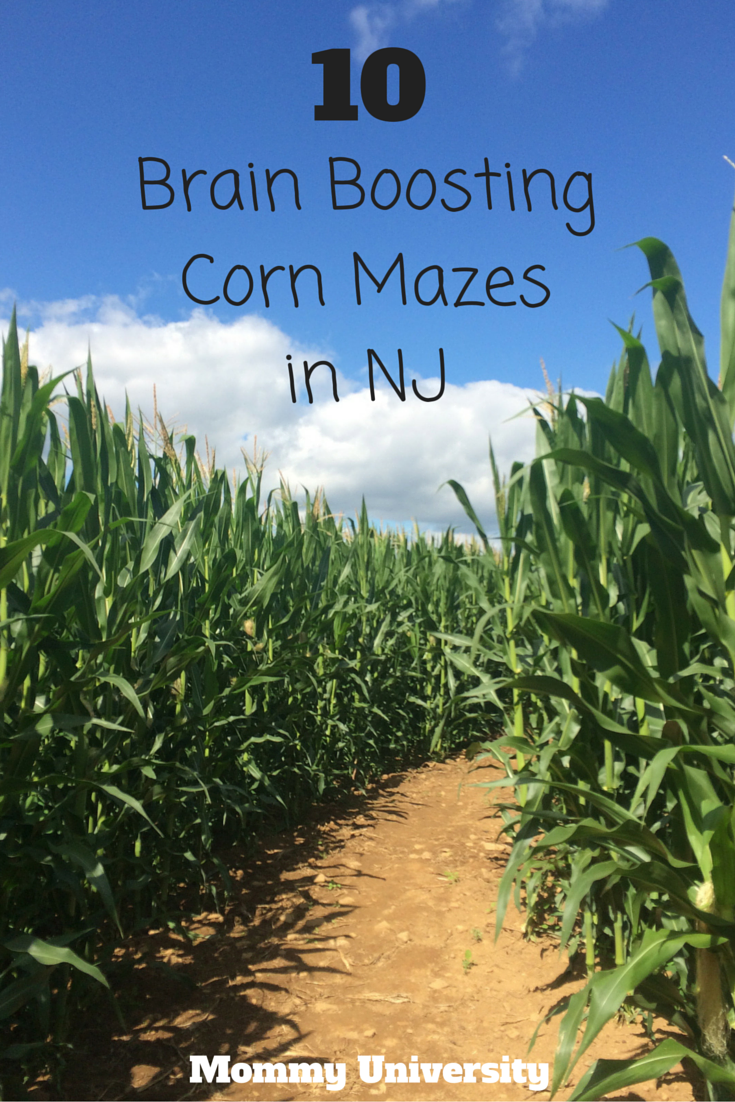 10 Brain Boosting Corn Mazes