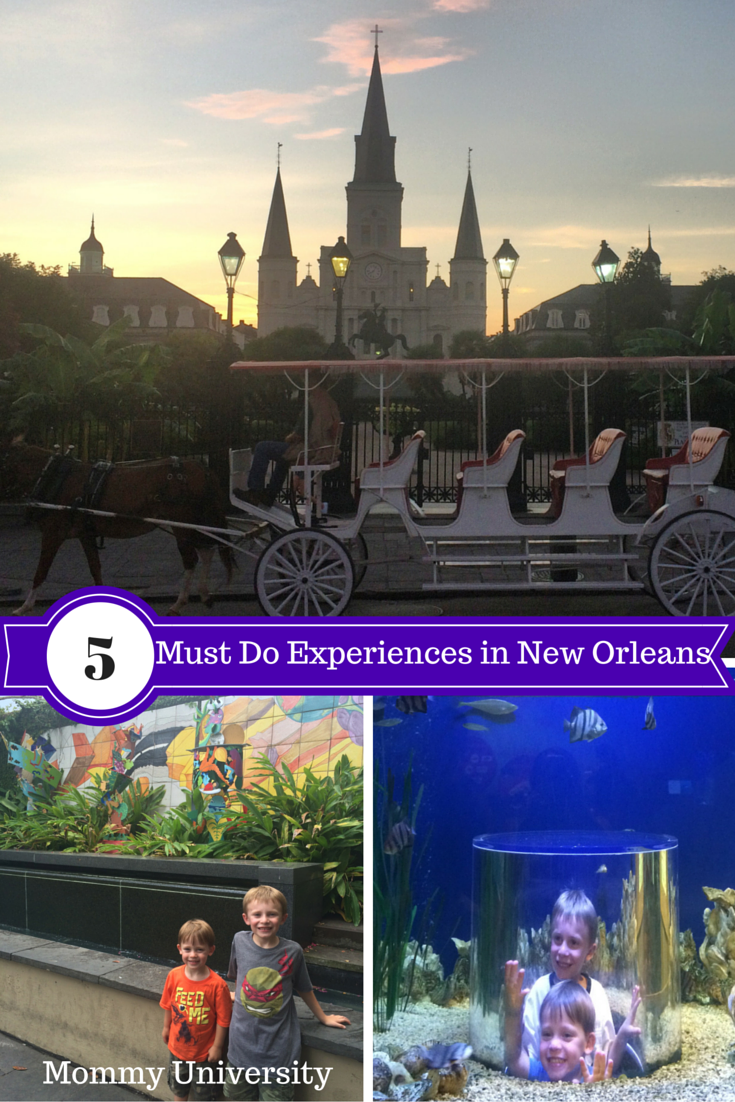 Must Do: 5 Must Do Experiences In New Orleans (with Kids)