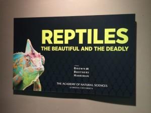 Academy Reptiles Exhibit