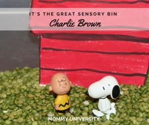Peanuts Sensory Bin
