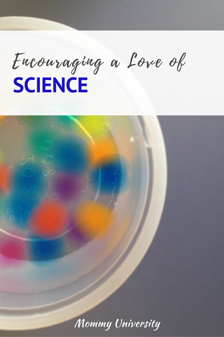 Encouraging a Love of Science