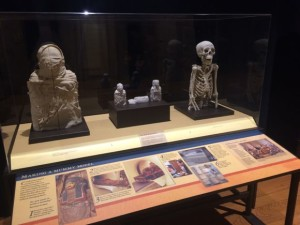Mummy Reproductions at The Franklin Institute