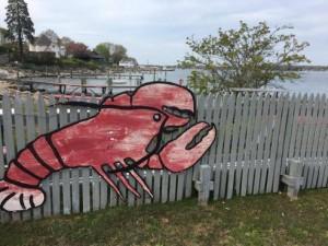 Abbott's Lobster on the Rough