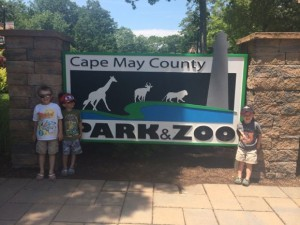 Cape May County Zoo Sign