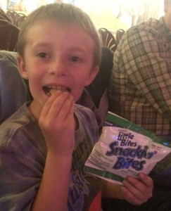 My son LOVES the apple cinnamon Snackin' Bites!