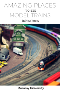 Model Trains in NJ
