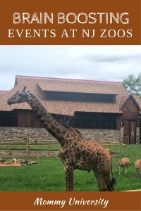 Brain Boosting Events at NJ Zoos