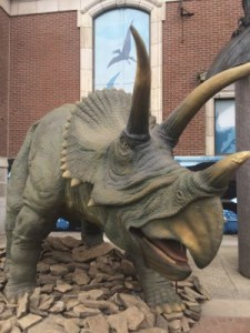 Dinosaurs Unearthed Triceratops