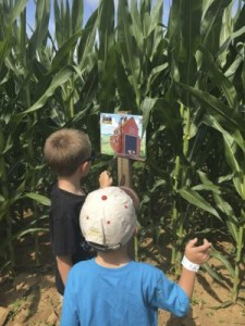 Finding Clues in Corn Maze