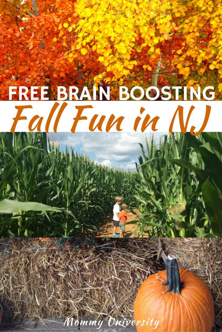 Free Brain Boosting Fall Fun in NJ