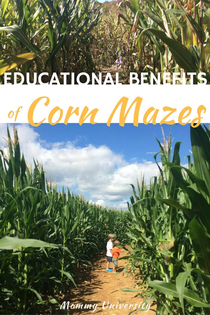 Educational Benefits of Corn Mazes