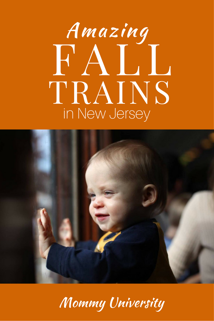 Amazing Fall Trains