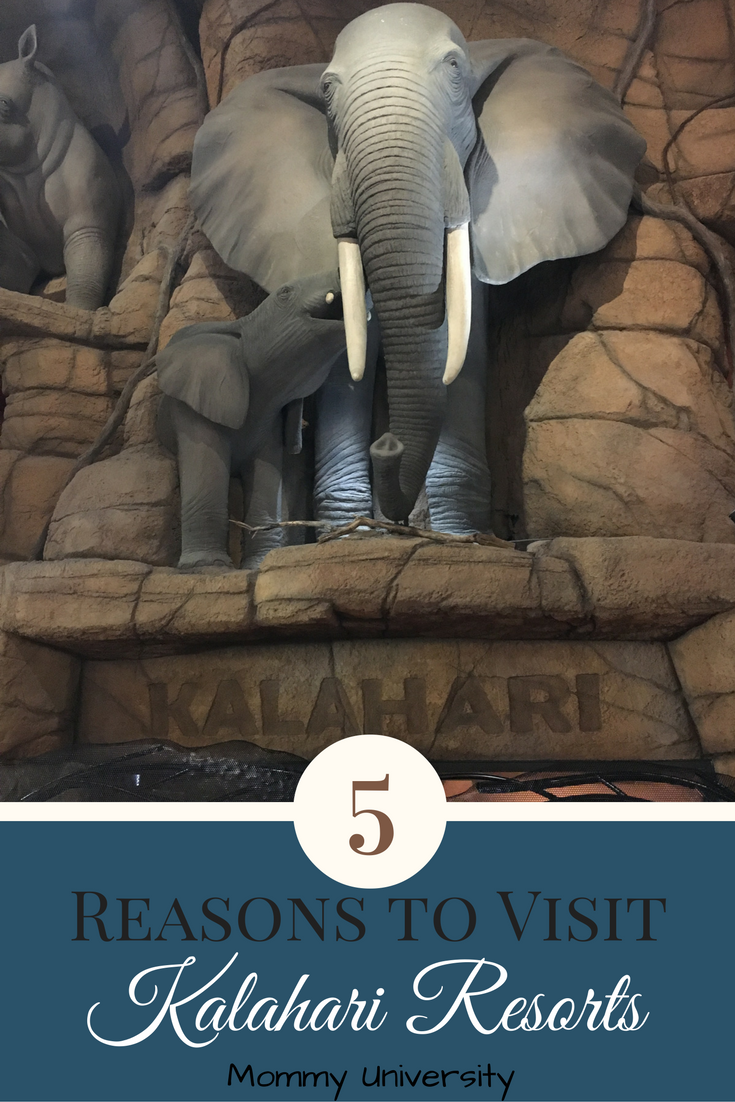5-reasons-to-visit-kalahari-resorts