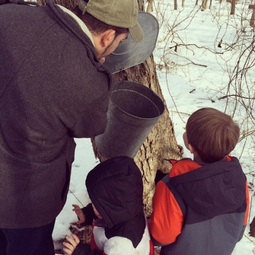 Maple Sugaring in Chatham