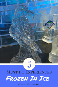 5 must do experiences at frozen in ice