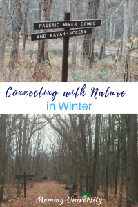 Connecting with Nature in Winter